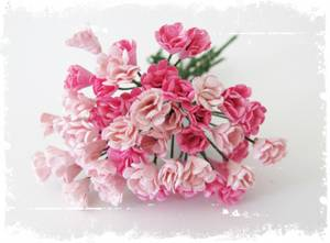 Bilde av Papirdesign - Rufsete blomsterknopper - Rosa