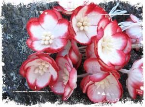 Bilde av Papirdesign - Kirsebærblomst - rød