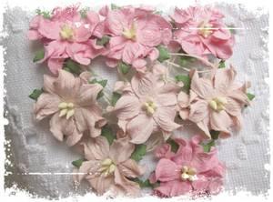 Bilde av Papirdesign - Gardenia, små - Lys rosa