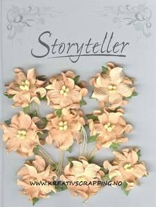 Bilde av Storyteller - Gardenia små - Aprikos - 9223