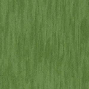 Bilde av Bazzill - Fourz (Grass Cloth) - 5-5103 - Guacamole